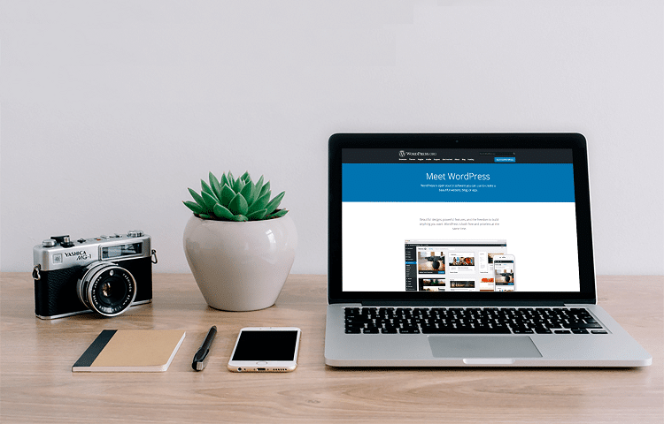 wordpress SEO benefits